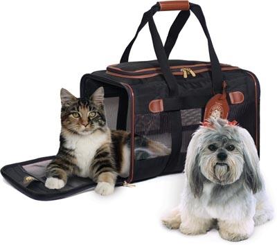 Размещение в гостинице Бриз г.Рязань с домашними животными